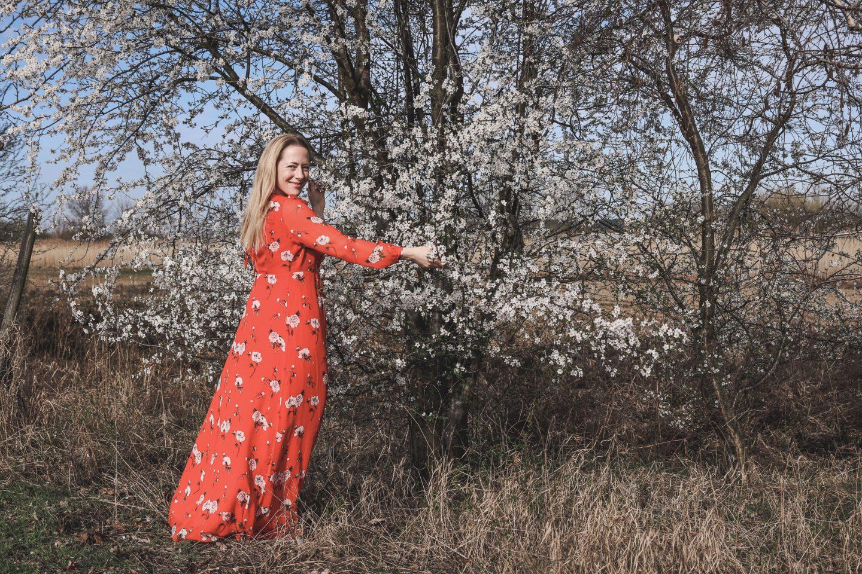 Kirschblüte: Das rote Ivy & Oak Kleid |Anzeige, enthält Affiliate Links