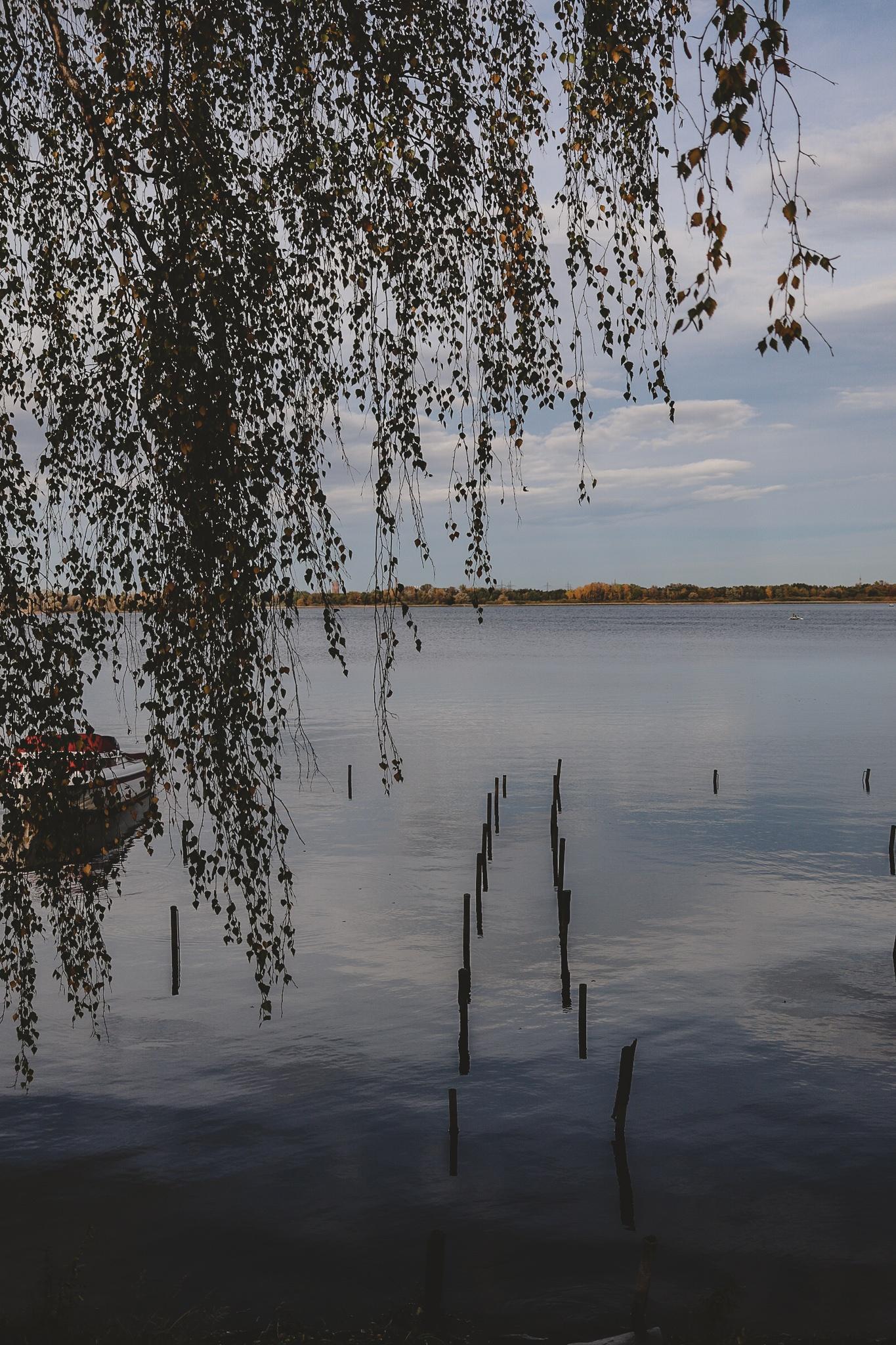 """Lesetipp: """"Geplant war nur ein Kaffee: Seensucht trifft Landleben"""""""